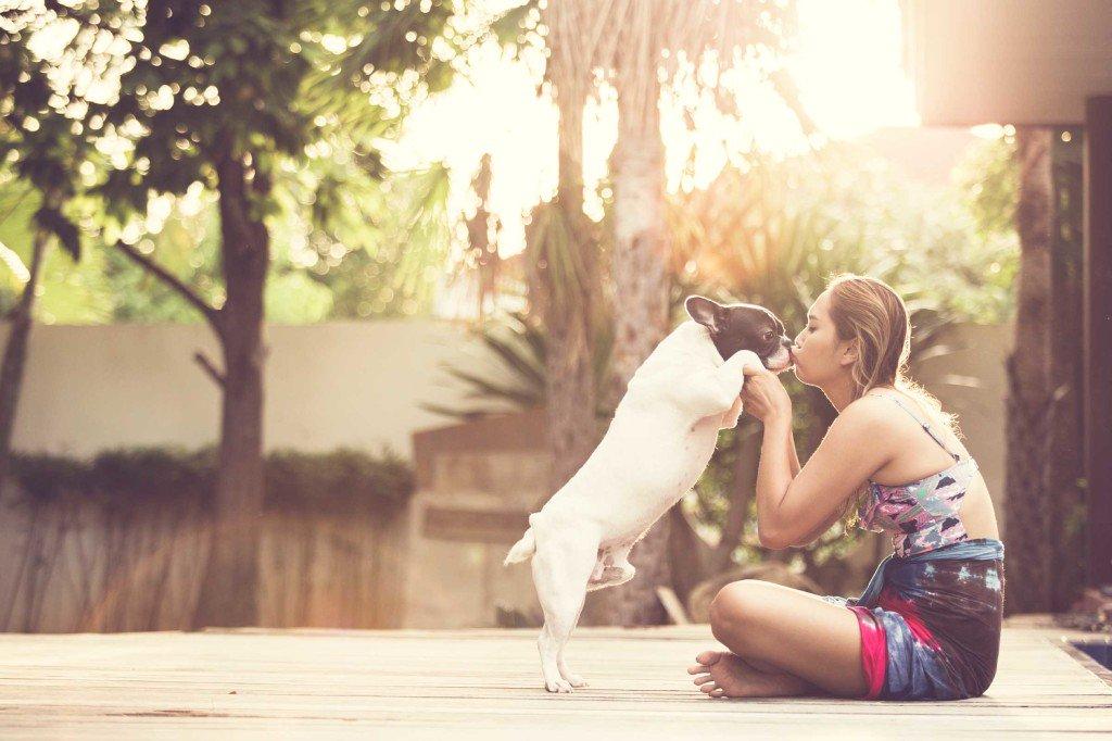 你的宠物不会告诉你50个秘密