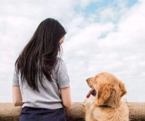 研究报告:饲养宠物犬有益于女性身心健康